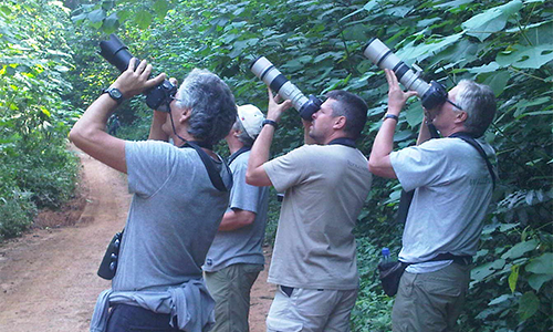 5 days Uganda bird watching tour Murchison Falls National Park