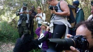 9 Days Birding Safari Uganda Gorilla Trekking Safari